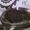 уголь фасованный в мешках марки