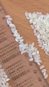 Рис шлифованный, рис дробленный от ПРОИЗВОДИТЕЛЯ - Изображение #3, Объявление #1111086